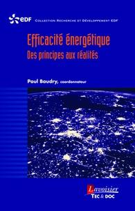 Paul Baudry - Efficacité énergétique - Des principes aux réalités.