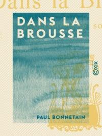 Paul Bonnetain - Dans la brousse - Sensations du Soudan.