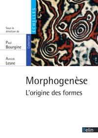 Paul Bourgine et Annick Lesne - Morphogenèse. L'origine des formes.