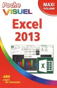Paul McFedries - Excel 2013 - Maxi volume.