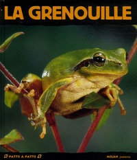 Paul Starosta - La grenouille.
