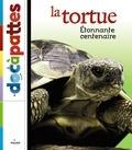 Paul Starosta et Benjamin Samson - La tortue.