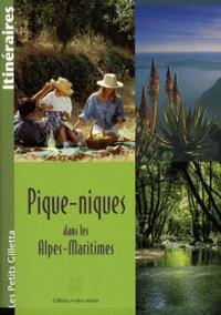 Paul Tristan Roux - Pique-niques dans les Alpes-Maritimes.