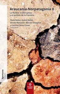 Paula Núñez et Andrés Núñez - Araucania-Norpatagonia II - La fluidez, lo disruptivo y el sentido de la frontera.