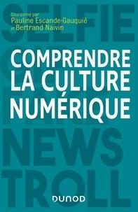 Comprendre la culture numérique - Pauline Escande-Gauquié pdf epub