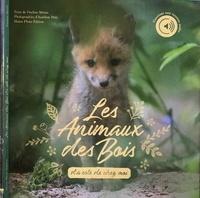Pauline Metais et Aurélien Petit - Les animaux des bois d'à côté de chez moi.