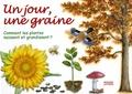 Pauline Neveu - Un jour, une graine - Comment les plantes naissent et grandissent ?.
