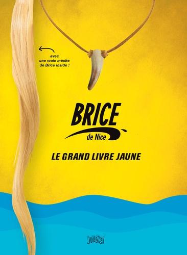 Pauline Roland et Sabine Duhamel - Brice de Nice, le grand livre jaune.