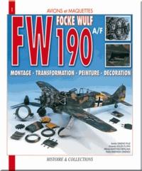 Pedro Andrada Berlana et Eduardo Soler Flors - Focke Wulf FW 190A/F - Montage, transformation, peinture, décoration.