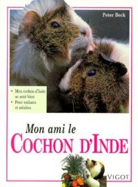 Mon ami le cochon dInde.pdf