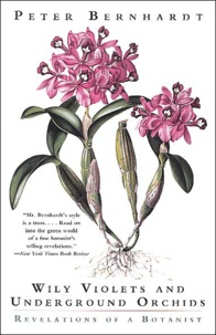 Peter Bernhardt - Wily Violets and Undergrounds Orchids - Revelations of a Botanist.
