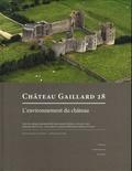 Peter Ettel et Anne-Marie Flambard Héricher - Château Gaillard 28 - Etudes de castellologie médiévale. L'environnement du château.