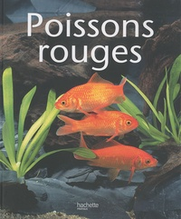 Peter Stadelmann - Poissons rouges.