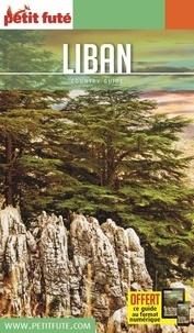 Téléchargez des manuels epub gratuits Petit Futé Liban 9782305022192 par Petit Futé in French PDF iBook