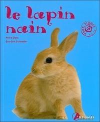 Era-circus.be Le lapin nain Image