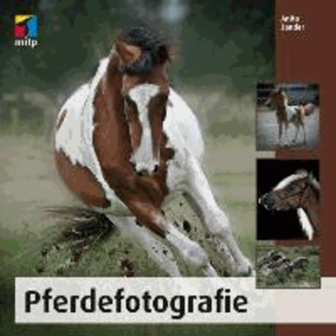 Pferdefotografie.