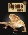 Philip Purser - Agame barbu - Pogona vitticeps P. henrylawsoni.