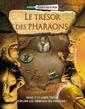 Philip Steele - Le trésor des pharaons.
