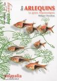 Philippe Chevoleau - Les arlequins - Le genre Trigonostigma.