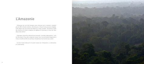 L'Amazonie racontée aux enfants