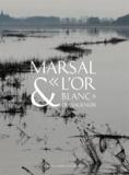 """Philippe Hoch - Marsal & """"l'or blanc"""" du Saulnois - Le musée départemental du sel de Marsal."""