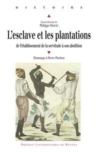 Philippe Hrodej et Anne-Marie Brenot - L'esclave et les plantations - De l'établissement de la servitude à son abolition.