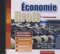 Philippe Le Bolloch - Economie et Droit 1e professionnelle - CD-ROM.
