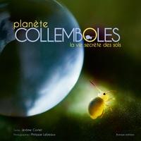 Histoiresdenlire.be Planète collemboles - La vie secrète des sols Image