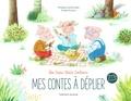 Philippe Lechermeier et Amélie Dufour - Les Trois Petits Cochons.