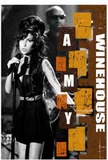 Philippe Margotin - Amy WineHouse - L'infernale Diva.