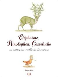 Philippe Mignon - Eléphasme, Rhinolophon, Caméluche et autres merveilles de la nature.