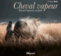 Ucareoutplacement.be Cheval vapeur - Travail équestre en forêt Image