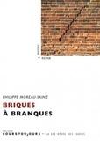 Philippe Moreau-Sainz - Briques à branques.