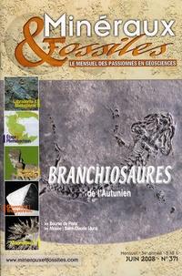 Patrice Lebrun - Minéraux & Fossiles N° 371, Juin 2008 : Branchiosaures de l'Autunien.