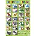 Piccolia - Alphabet des animaux.