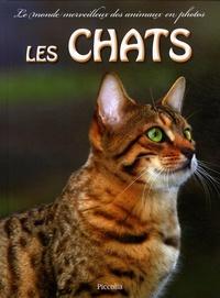 Alixetmika.fr Les chats Image