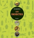 Piccolia - Les insectes.