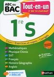 Pierre-Antoine Desrousseaux et Karine Marteau-Bazouni - Tout-en-un 1re S.