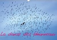 Pierre-Antoine Favre - La danse des étourneaux (Calendrier mural 2017 DIN A3 horizontal) - La migration des étourneaux (Calendrier mensuel, 14 Pages ).