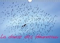 Pierre-Antoine Favre - La danse des étourneaux (Calendrier mural 2017 DIN A4 horizontal) - La migration des étourneaux (Calendrier mensuel, 14 Pages ).