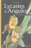 Pierre Bertaux - Lycastes et Anguloa - Des orchidées hors du commun.