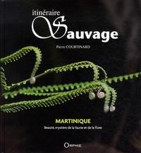 Itinéraire sauvage - Martinique : beauté, mystère de la faune et de la flore.pdf