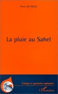 Pierre de Felice - La pluie au Sahel.