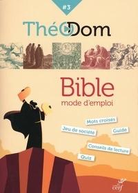 Pierre de Marolles - Théodom - Tome 3, Bible mode d'emploi.
