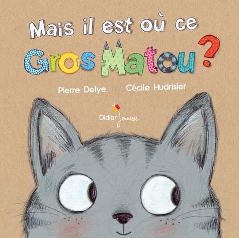 Pierre Delye et Cécile Hudrisier - Mais il est où ce gros matou ?.