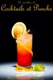 Pierre-Emmanuel Malissin - 50 Recettes de cocktails et punchs.