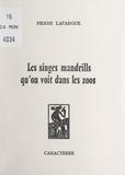 Pierre Lafargue et Bruno Durocher - Les singes mandrills qu'on voit dans les zoos.