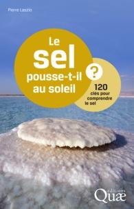 Pierre Laszlo - Le sel pousse-t-il au soleil ? - 120 clés pour comprendre le sel.