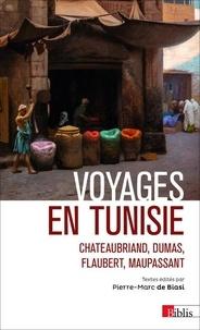 Pierre-Marc de Biasi - Voyages en Tunisie - Chateaubriand, Dumas, Flaubert, Maupassant.