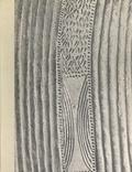 Pierre Meauzé et D. W. Bloemena - L'Art nègre, sculpture.